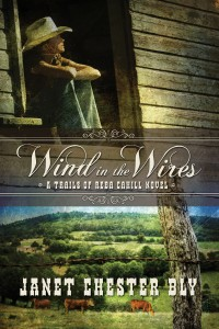 Reba Cahill Series, Book 1, Wind in the Wires by Janet Chester Bly