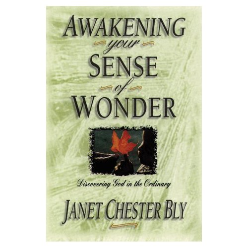 Awakening Your Sense of Wonder – helps for moms
