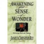 Bly Books Inspiration for moms - Awakening Your Sense of Wonder by Janet Chester Bly
