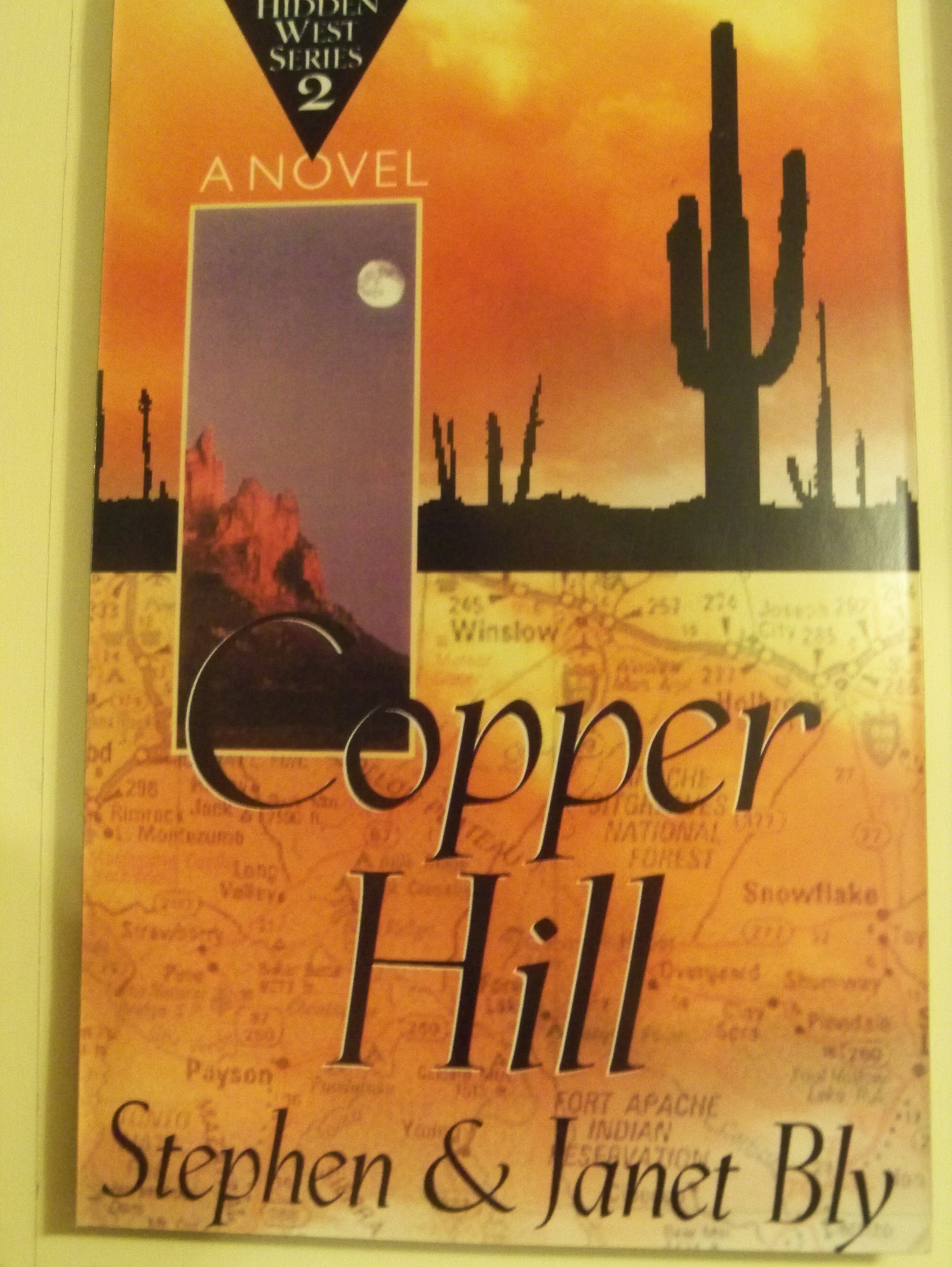 Copper Hill, Hidden West Series – Family Mystery Series