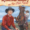Mysterious Robbery on the Utah Plains by Stephen Bly