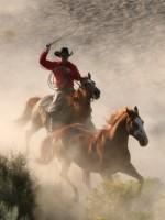 Cowboy rodeo roper