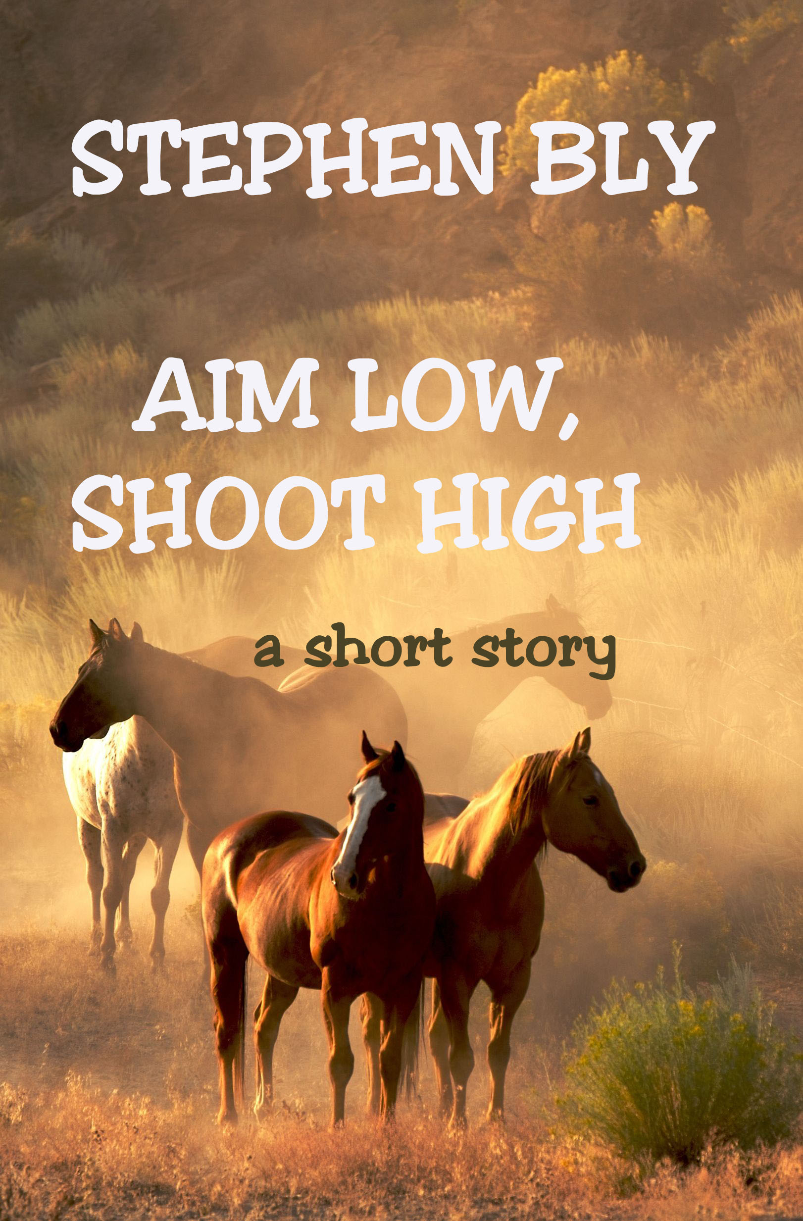 Western Short Story: Aim High, Shoot Low – digital edition