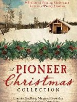 Pioneer Christmas Stories: A Pioneer Christmas Collection
